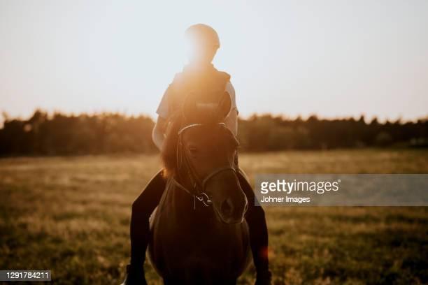 girl horse riding - gotland bildbanksfoton och bilder