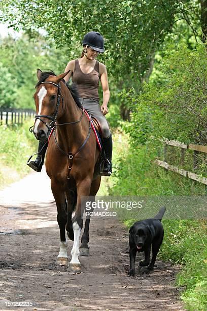 Girl 乗馬では、犬には、ノルウェー