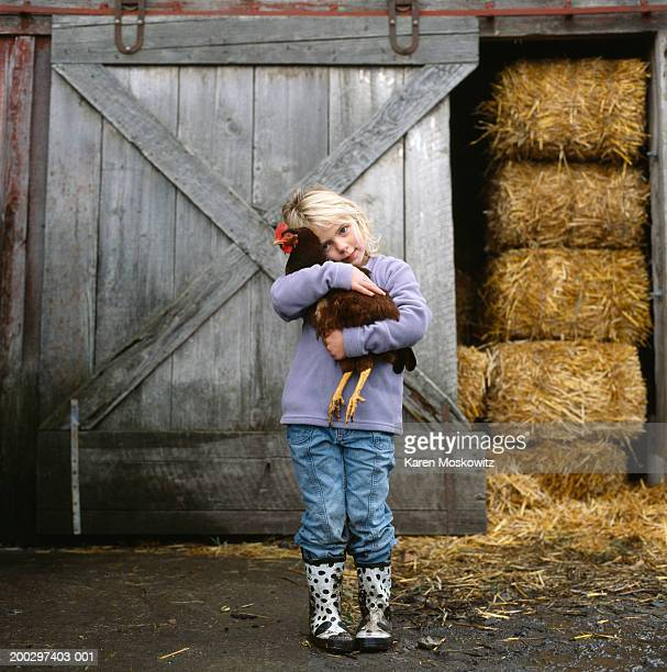 girl (5-7) hugging chicken outside barn, portrait - livestock stock pictures, royalty-free photos & images