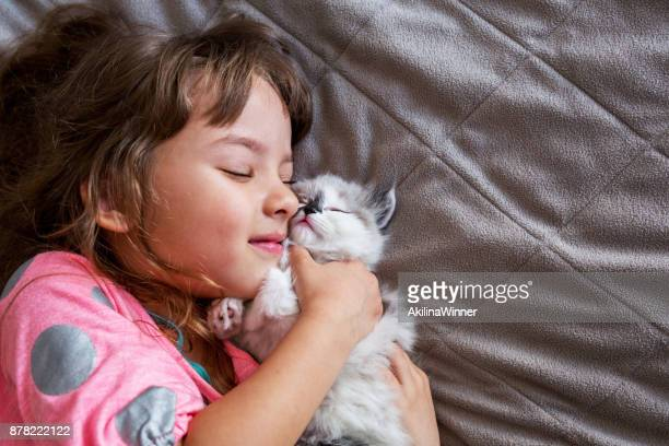 girl hugging her kitten. - persian girl stock photos and pictures