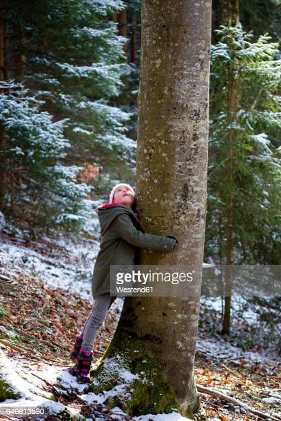 girl hugging tree in forest in winter - tree hugging stock pictures, royalty-free photos & images