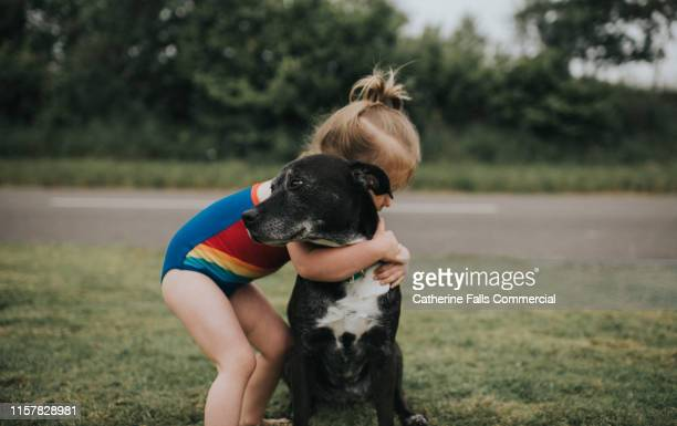 girl hugs dog - embracing stock pictures, royalty-free photos & images