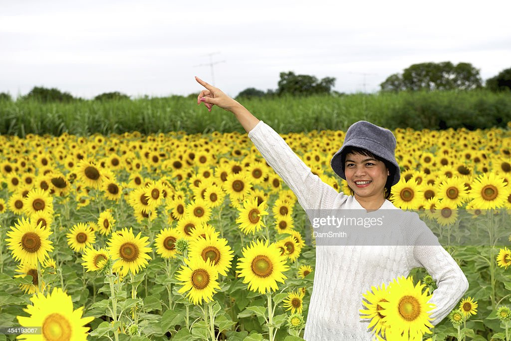 Girl in a field : Stock Photo