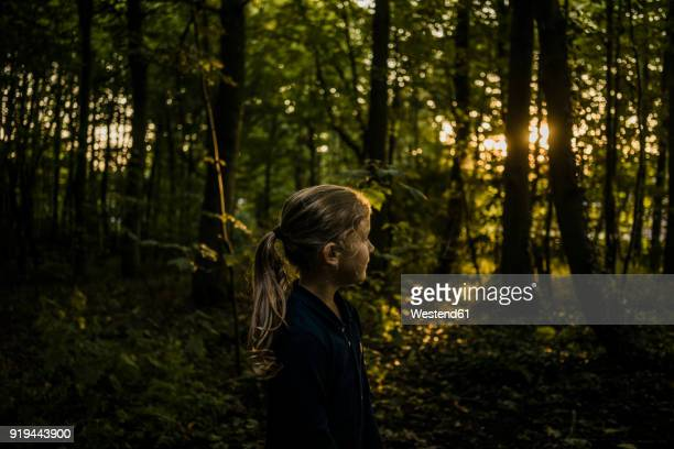 Girl in a forest at sunset