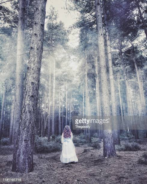 girl in a long dress standing in a forest, eversley, hampshire, united kingdom - long dress stock pictures, royalty-free photos & images