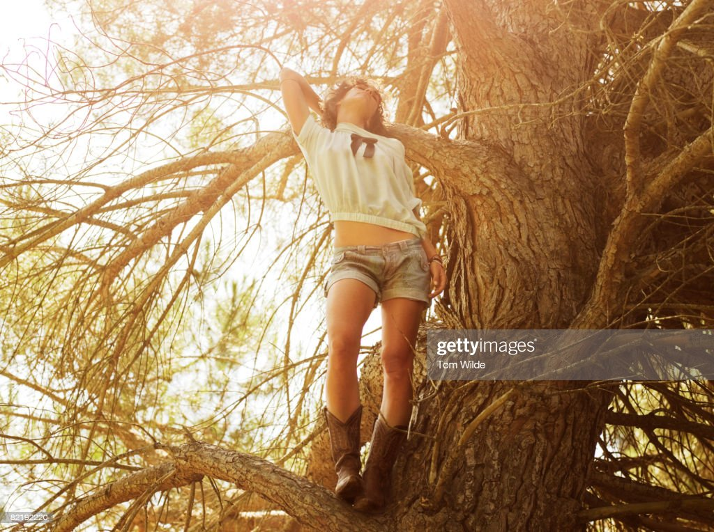 Girl in a tree : Stock Photo