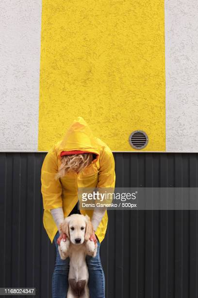 a girl in a yellow raincoat holding a puppy - images stock pictures, royalty-free photos & images