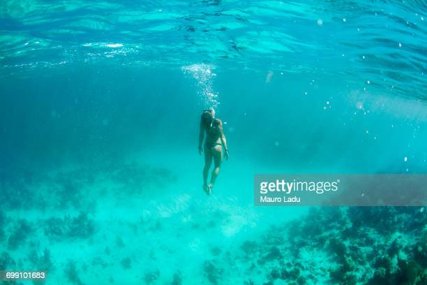 girl (20-30 years old) in bikini swims under the surface in cristal blue water in the coast off to trinidad, cuba - trinidad cuba stockfoto's en -beelden