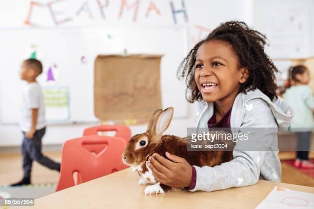 Girl in daycare taking care of a rabbit