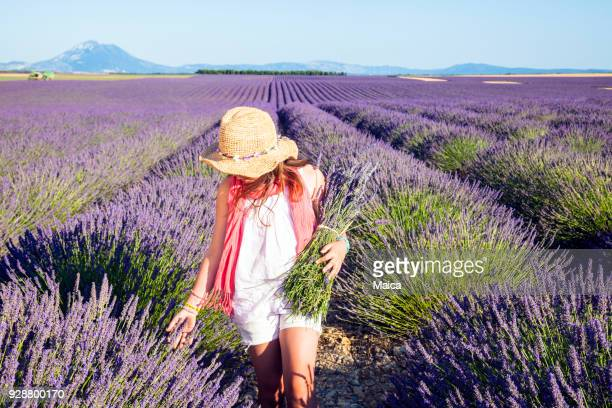 girl in fields of lavander - purple hat stock pictures, royalty-free photos & images