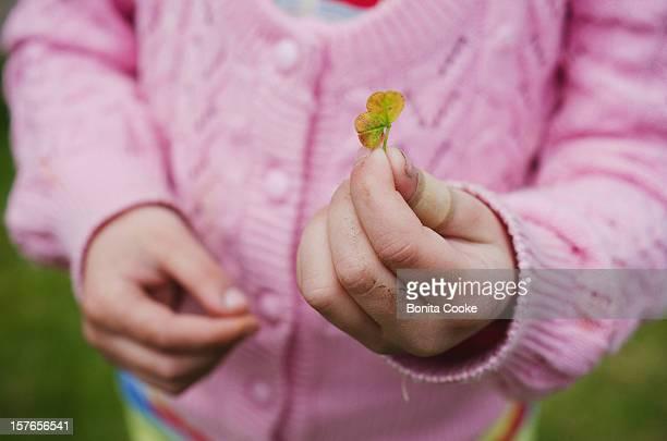 girl in garden, proud of picked clover - 4 leaf clover stock-fotos und bilder