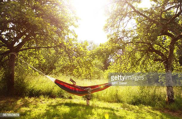 girl in hammock using tablet device - hammock stock pictures, royalty-free photos & images