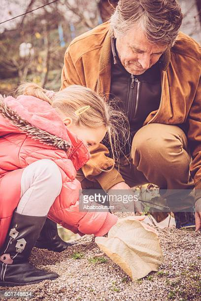 Girl in Pink Coat and Granfather Playing with Sand, Winter