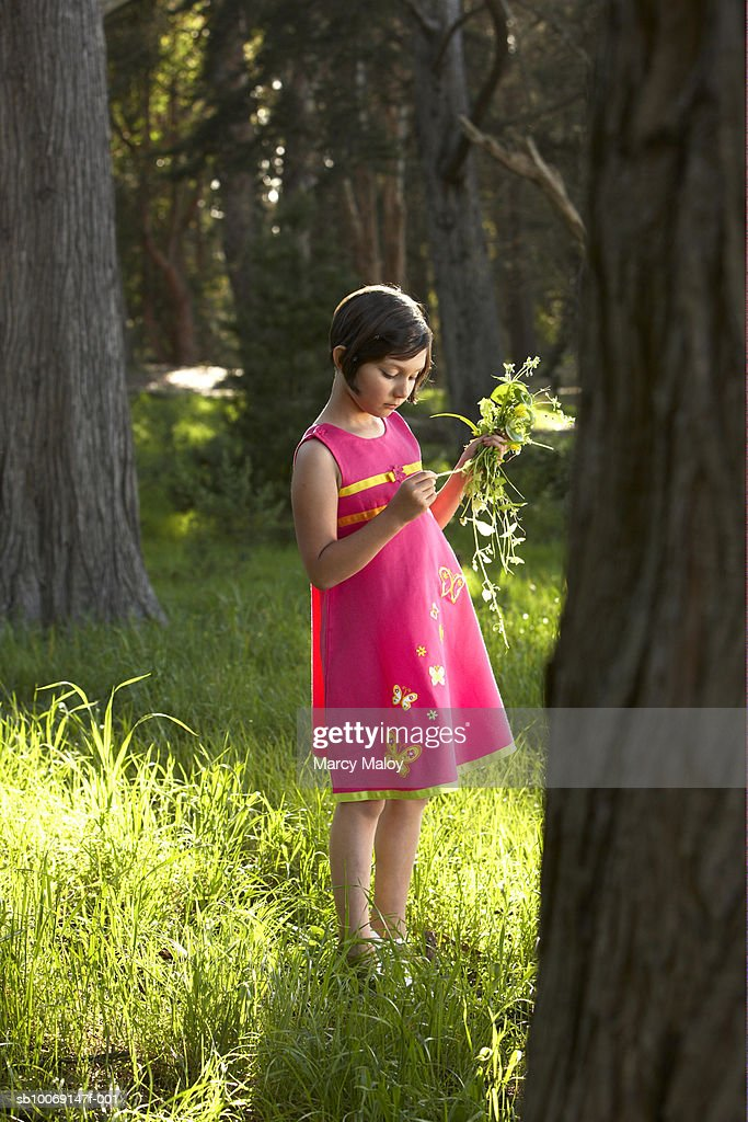 Girl (6-7) in pink dress collecting flowers in forest : Stockfoto
