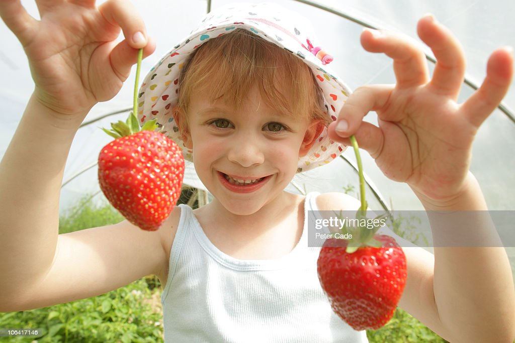 Girl in polytunnel with strawberrys : Stock Photo