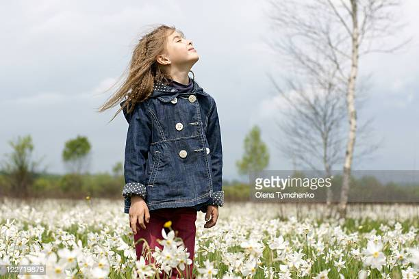 girl in spring flowers - narcissus mythological character stock photos and pictures