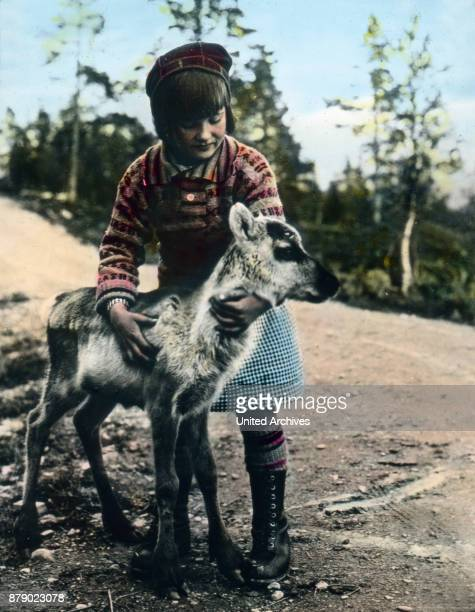 A girl in Sweden caressing a little reindeer calf