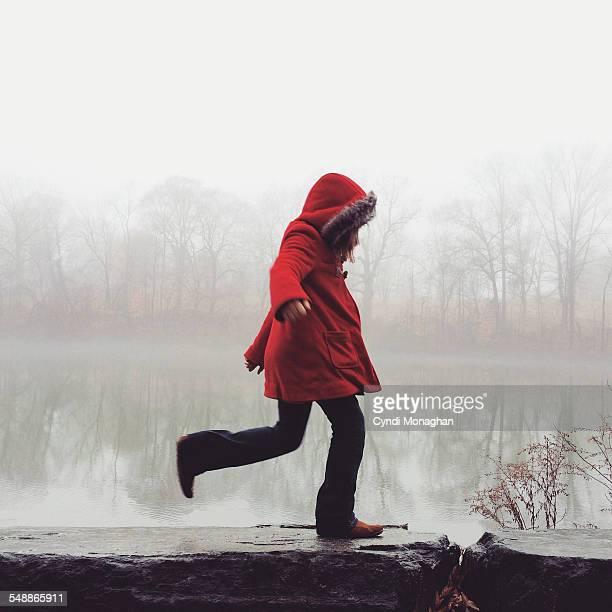 Girl in the Mist
