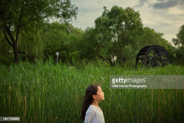 girl in white dress feels the wind - girl blowing horse - fotografias e filmes do acervo