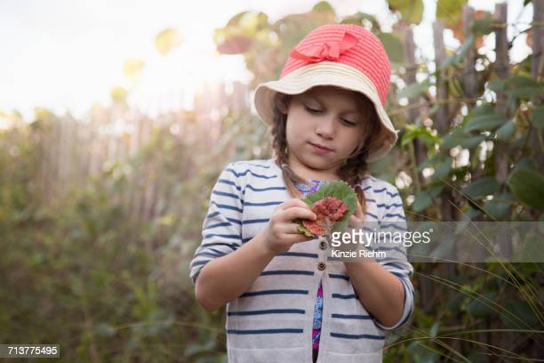 Girl investigating leaves, Blowing Rocks Preserve, Jupiter, Florida, USA
