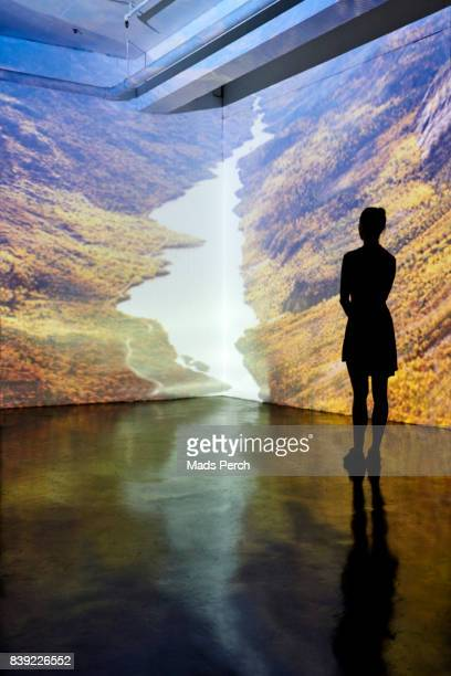 Girl is looking at a projected large scale image of a landscape