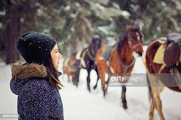 girl is looking herd of horses in the forest - christmas horse stock pictures, royalty-free photos & images