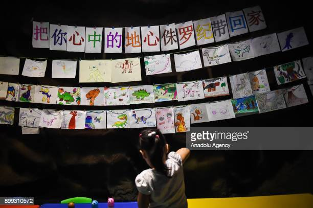 A girl is seen at the dinosaur theme park on December 28 2017 in Chengdu China There are ten dinosaur models at the first indoor dinosaur theme park...