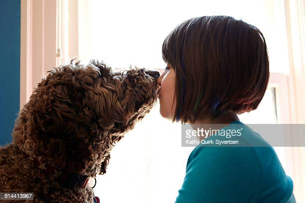girl kissing labradoodle dog in front of window - labradoodle stock photos and pictures