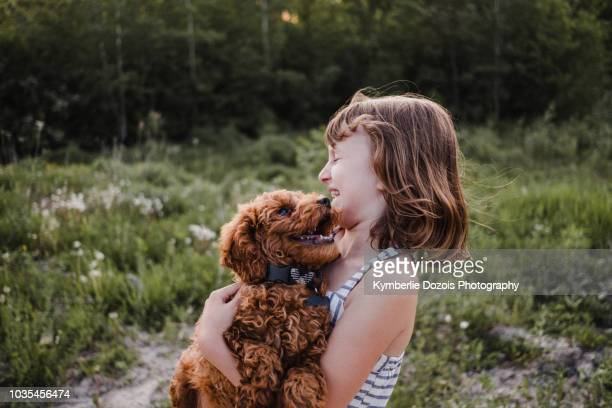 girl laughing at puppy's kisses - girls licking girls stock pictures, royalty-free photos & images