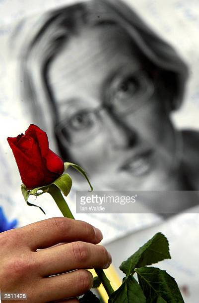 A girl lays a rose for murdered Swedish Foreign Minister Anna Lindh at Karolinska Hospital where she died September 19 2003 in Stockholm Sweden Mrs...