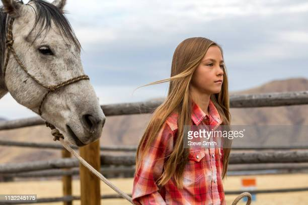 girl leading horse - girl blowing horse stock pictures, royalty-free photos & images
