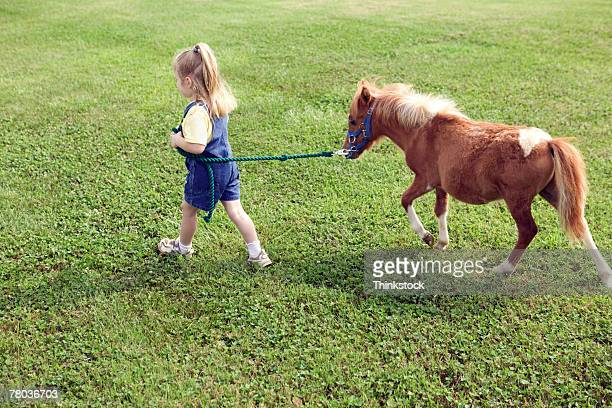 Girl leading Shetland pony