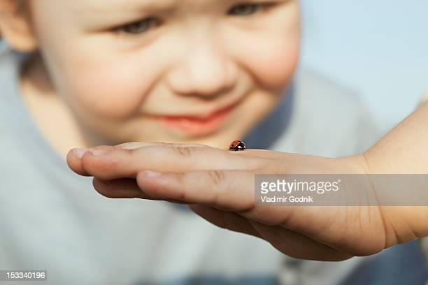 a girl looking at a ladybug on the hand of a person - coccinella foto e immagini stock