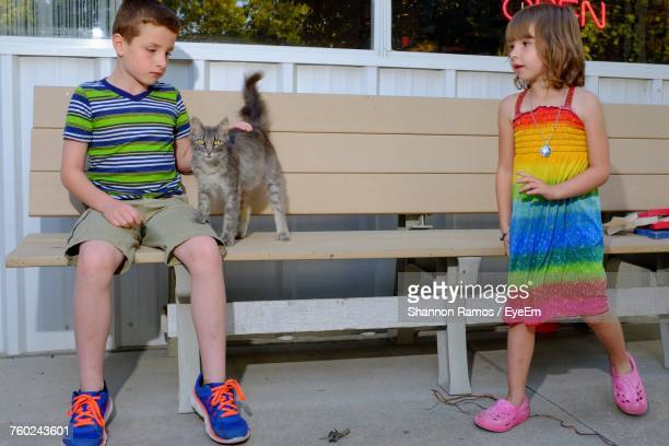Girl Looking At Brother Stroking Cat While Sitting On Bench At Park