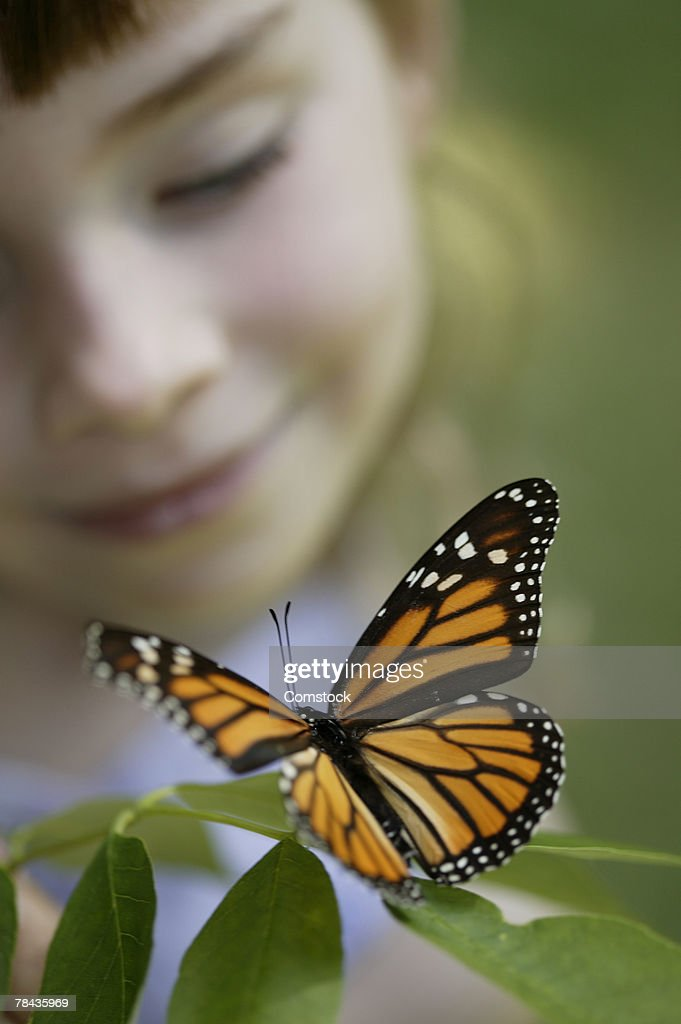 Girl looking at butterfly : Stockfoto