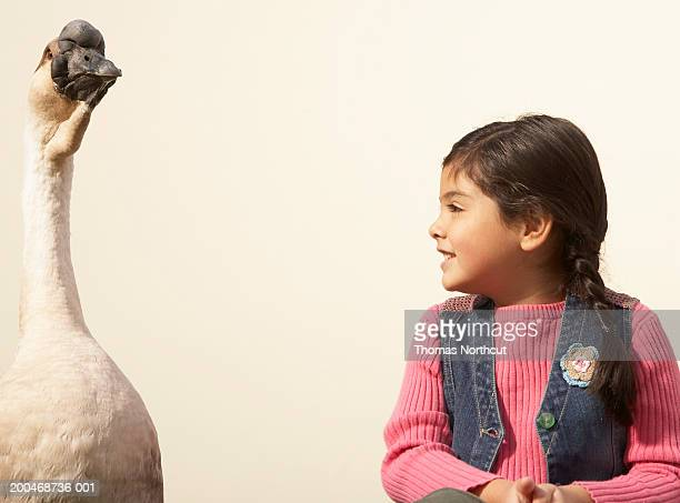 """Girl (5-7) looking at goose, smiling"""