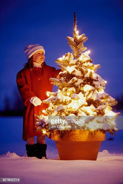 girl looking at illuminated christmas tree - jim craigmyle stock pictures, royalty-free photos & images