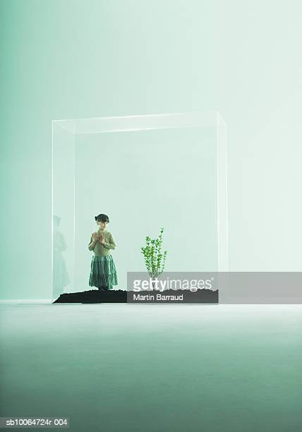 Girl (4-5) looking at plant in glass cabinet