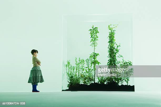 Girl (4-5) looking at plants in glass cabinet