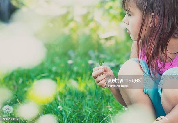 girl looking for 4-leaf clovers. - 4 leaf clover stock-fotos und bilder