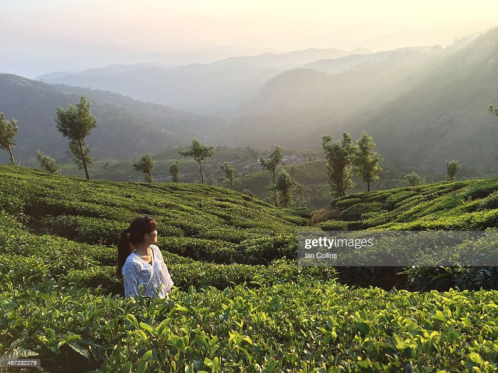 Girl looks down the valley in the tea plantation, Munnar, India.