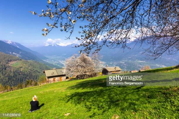 girl looks the landscape sitting on the grass. albosaggia, orobie alps, valtellina, lombardy, italy, europe - italia stockfoto's en -beelden