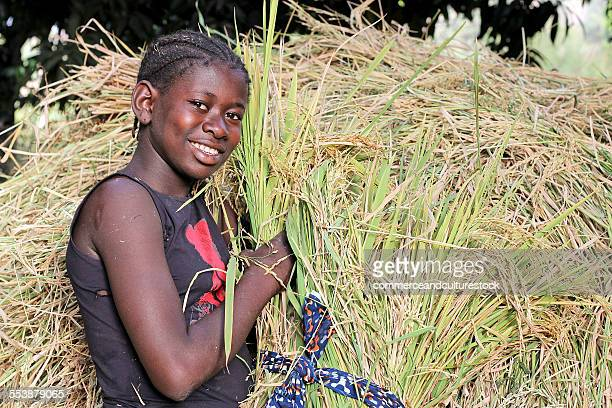 a girl lying on a pile of rice sheaves - マリ ストックフォトと画像