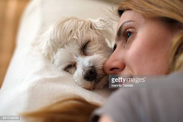 girl lying on bed with her cute dog - close to stock pictures, royalty-free photos & images