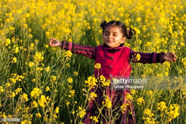 a girl mediating and doing yoga in mustard field - イスラマバード ストックフォトと画像