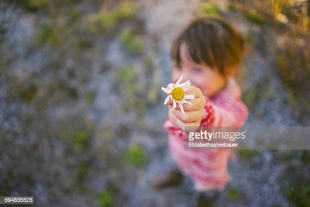 Girl offering a daisy