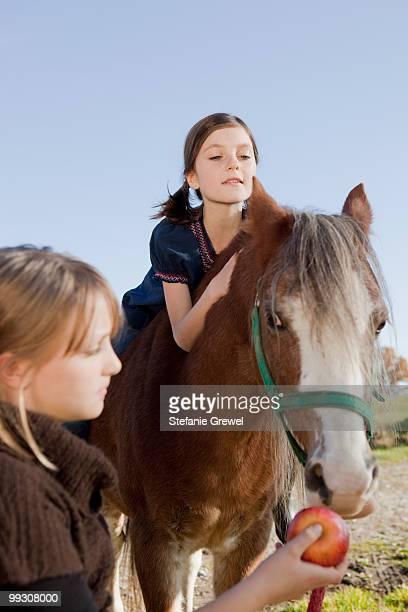 girl on a horseback - stefanie grewel stock-fotos und bilder