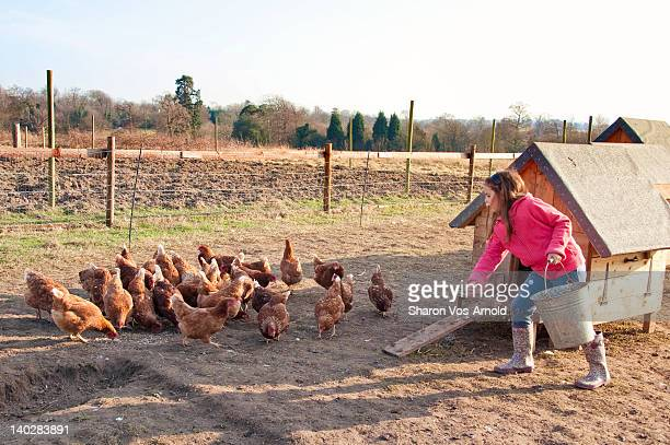 Girl on farm feeding free range chickens