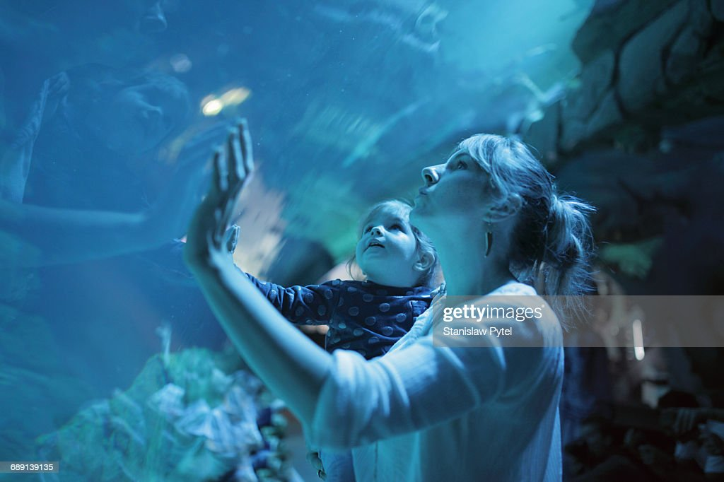 Girl on mother shoulders admiring aquarium : Stock Photo