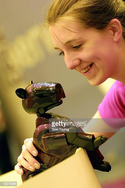 A girl pets an Aibo robot dog June 27 2001 at the Tomorrows World science and technology show in London
